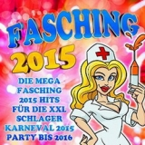 Fasching 2015 (9)